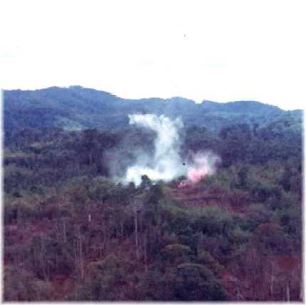 smoke in LZ